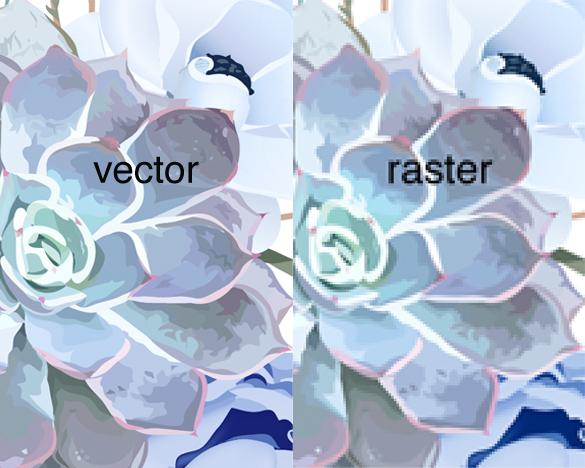 427-RasterVector.jpg